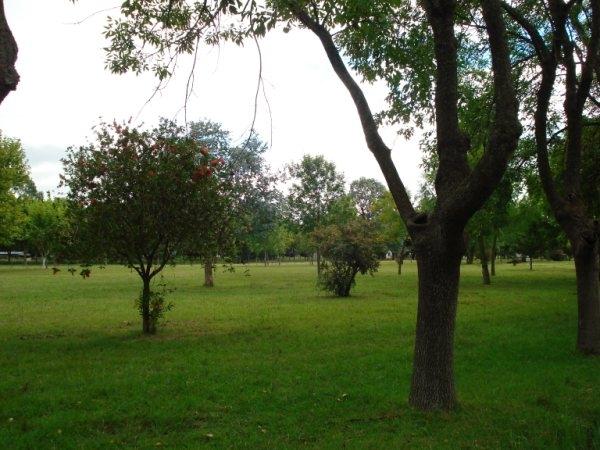 imagenes_de_mi_pueblo_2010_26
