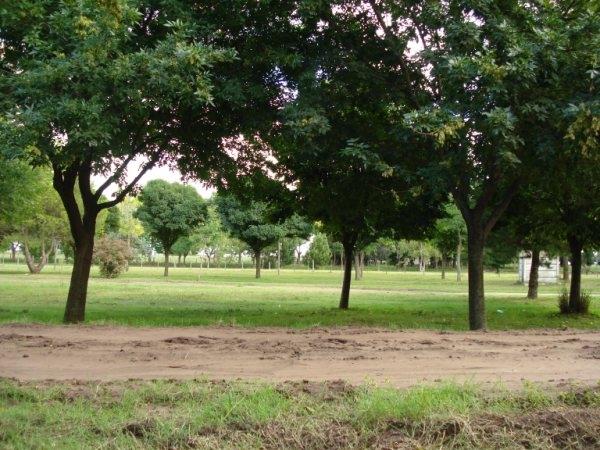imagenes_de_mi_pueblo_2010_74