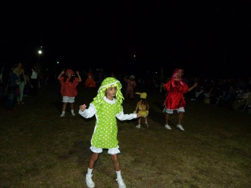 carnaval2015_plvd_0023