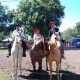Fiesta_Tradicion2_034