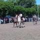 Fiesta_Tradicion2_035