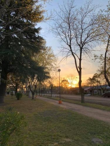 Plvd plaza1902