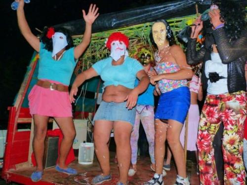 carnaval2015 plvd 0031