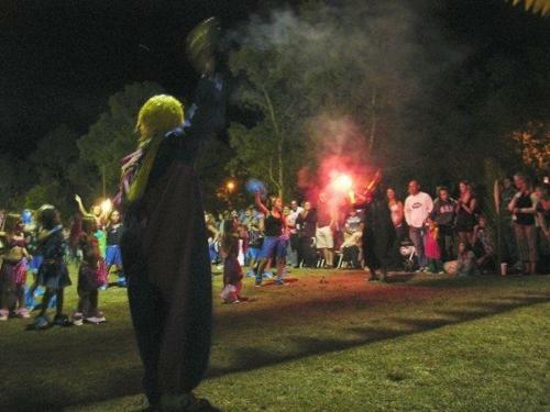 carnaval 2011 019