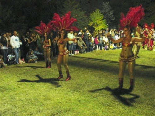 carnaval 2011 032